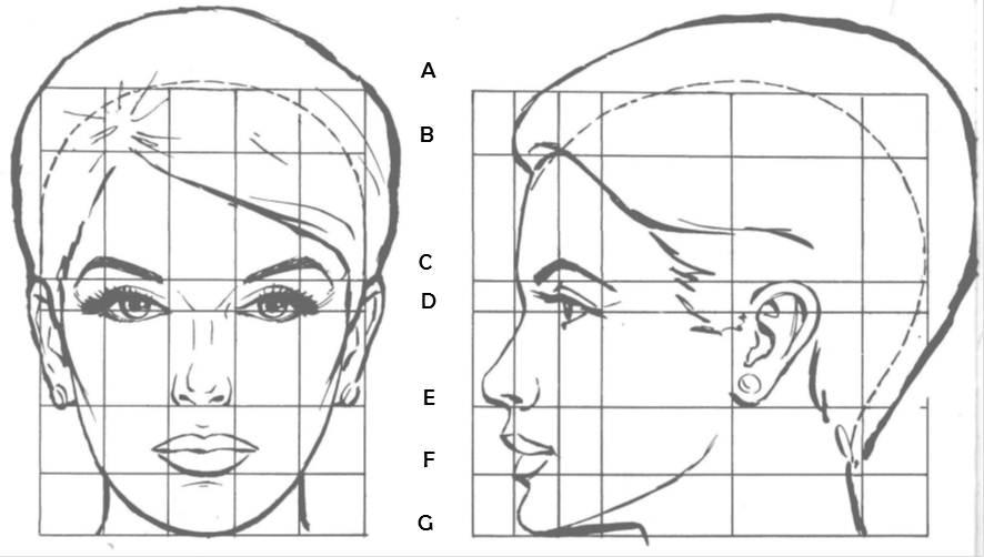 canon-rostro-femenino