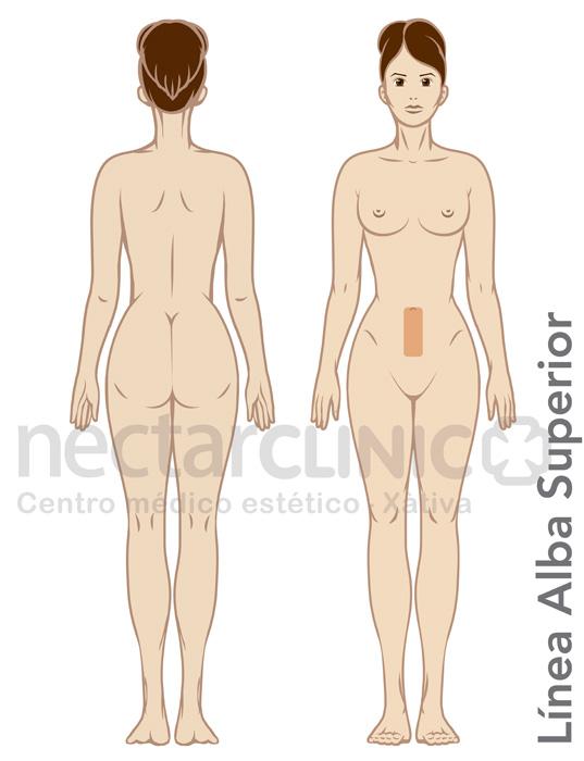 Corporal_Depilacion laser LINEA ALBA INFERIOR mujer 505 NectarCLINIC Xativa