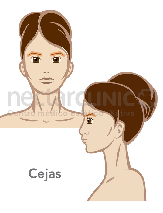Facial_Depilacion laser CEJAS mujer 507 NectarCLINIC Xativa